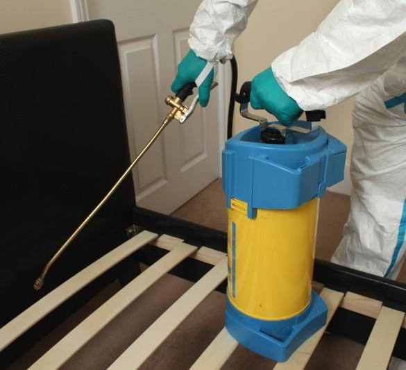 Spraying for bed bugs