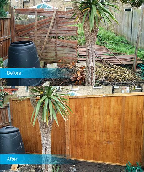 fence repair - before & after