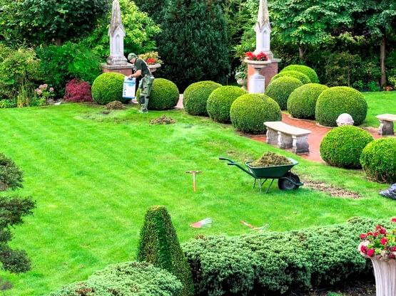 Treating a lawn